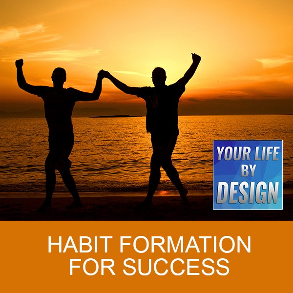 Habit Formation for Success